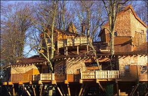 Alnwick Castle Tree House