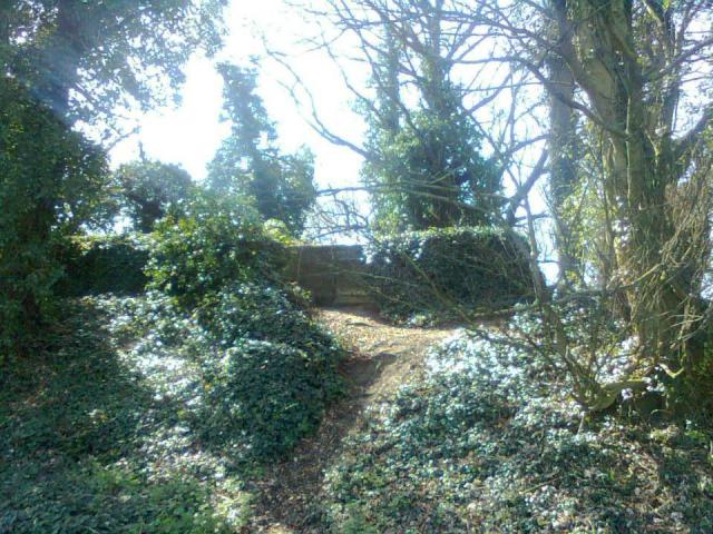 Pillbox S0004969