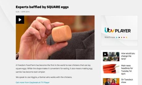 Square egg