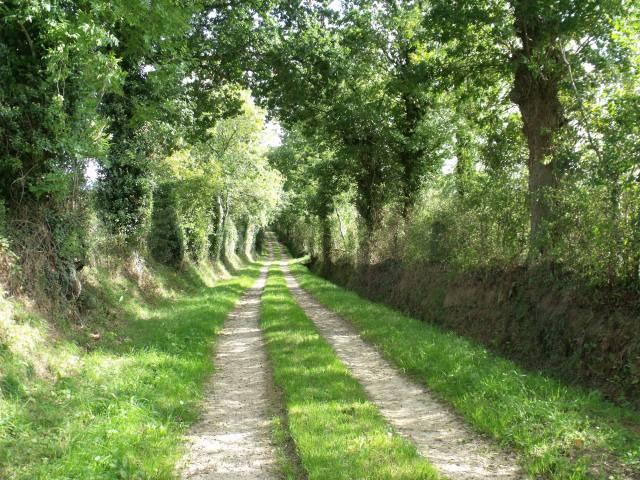 A quiet lane near La Cresperie