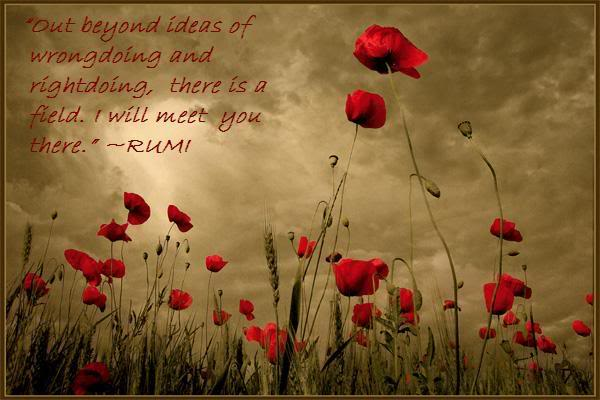 Will you meet with Rumi one day?