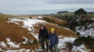 Tree planting in the Pennines by volunteers