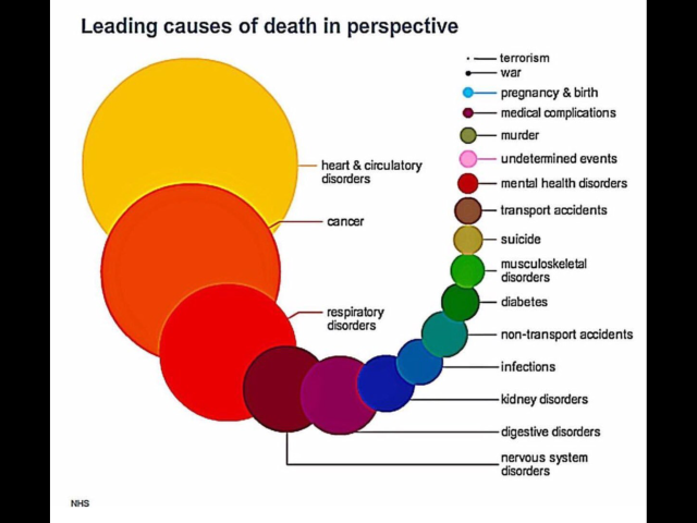 Risk Of Death From Terrorism