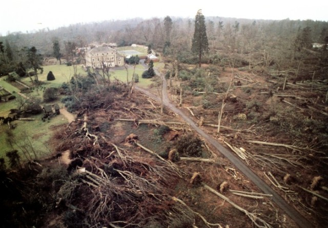 The Great Forests, parks and gardens of South East England were decimated.