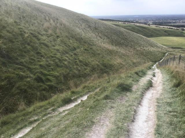 One route down from the Whitehorse to Dragons Hill